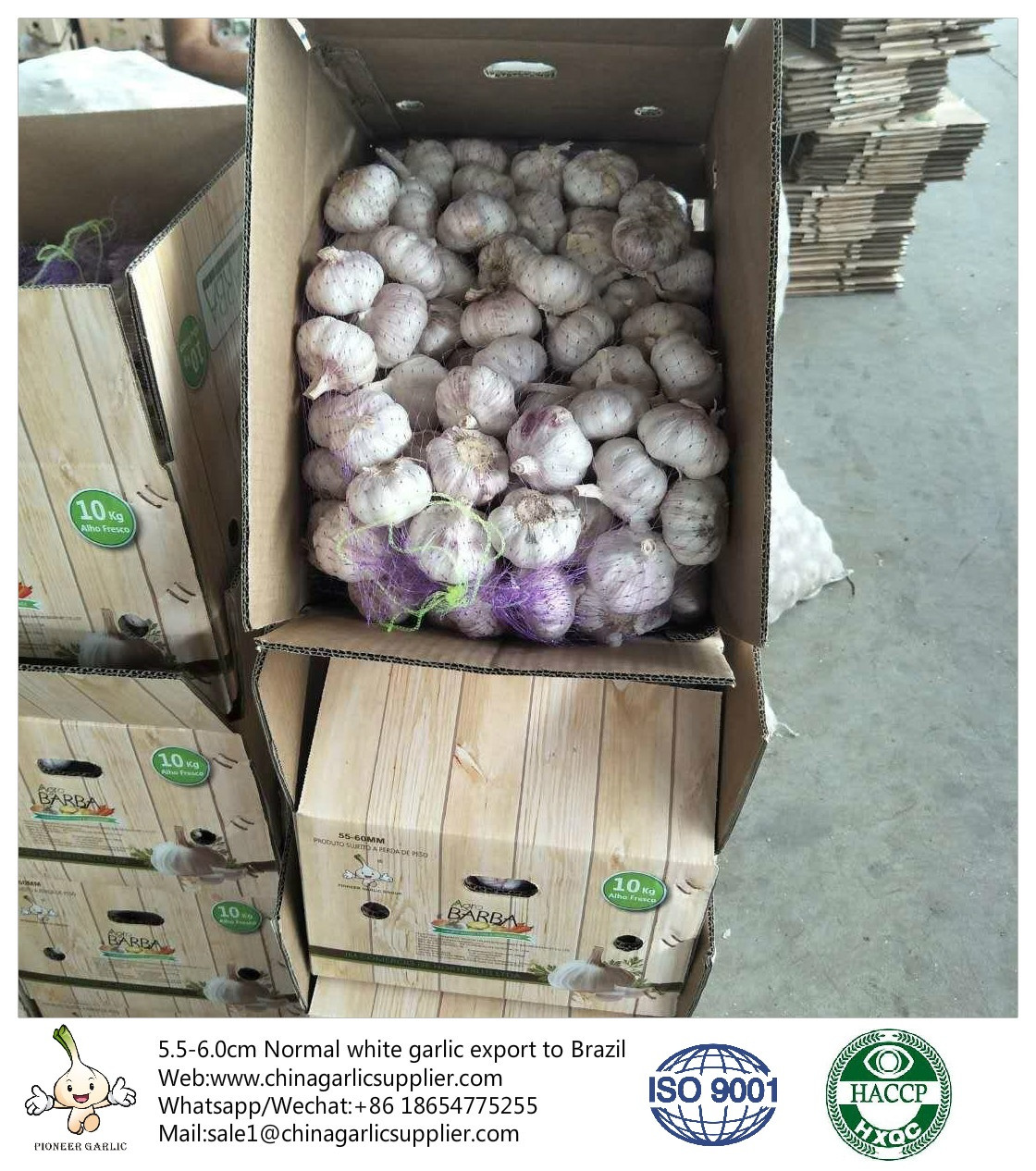 South African garlic prices rise suddenly and sharply