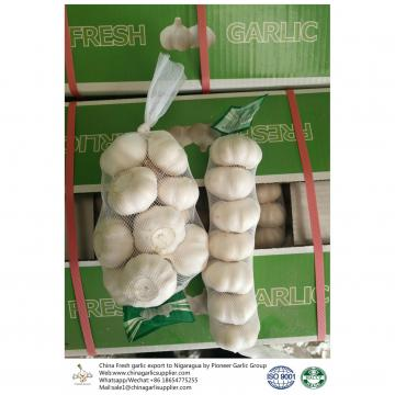 China 2018 Fresh Garlic export to Nigaragua