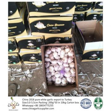 5.5-6.0 cm normal white garlic export to Brazil;