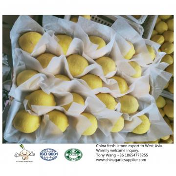 China Lemon export to Middle Asia